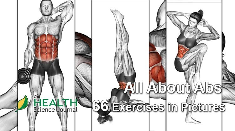 All About Abs 66 Exercises In Pictures Bodybuilding