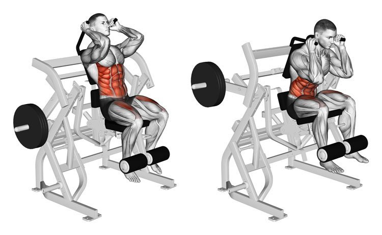 © Sasham | Dreamstime.com - Exercising for bodybuilding. Bending body to abdominal muscles and legs