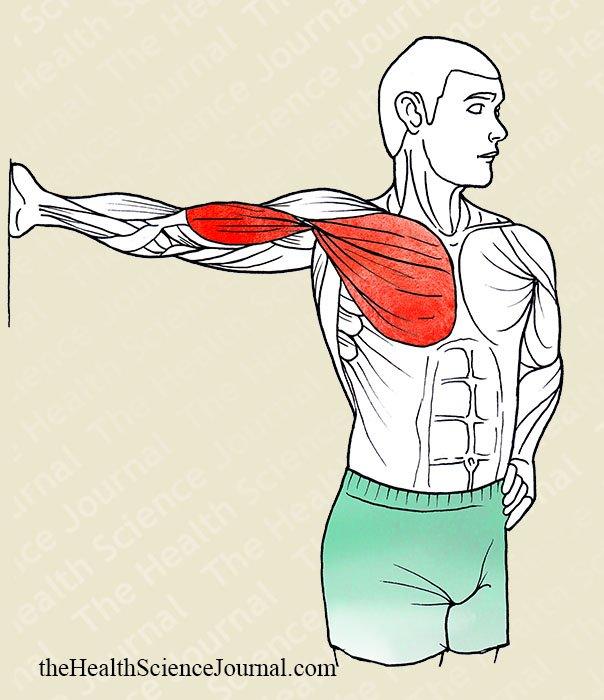 Fixed Arm Torso Rotation - Stretching