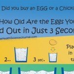 Curious How Old Are the Eggs You Bought? Find Out in Just 3 Seconds!