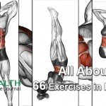 All About Abs – 66 Exercises in Pictures! Bodybuilding, Calisthenics & Yoga (Part 1)