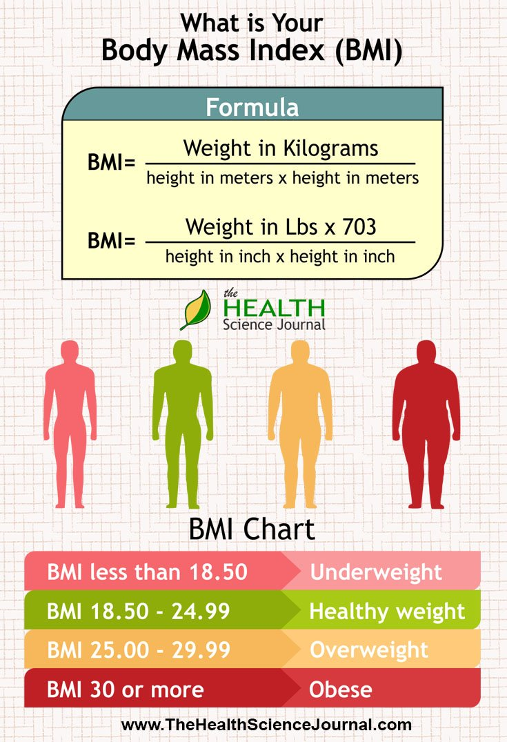 Do you know what your bmi is the health science journal bmi infographic nvjuhfo Gallery