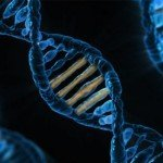 19 Pieces of Alien DNA Found in Human Genome