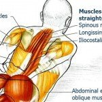 Exercises to Improve Your Posture and Bring Relief to Your Back & Spine, Part 5