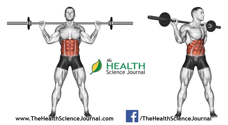 © Sasham | Dreamstime.com - Exercising for bodybuilding. Turns torso with barbell