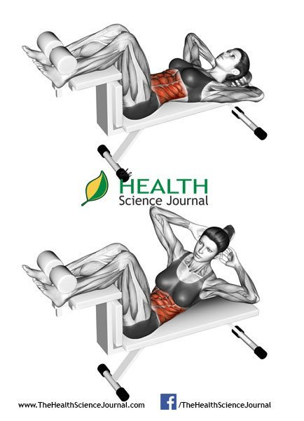 © Sasham | Dreamstime.com - Fitness exercising. Crunch Bench. Female
