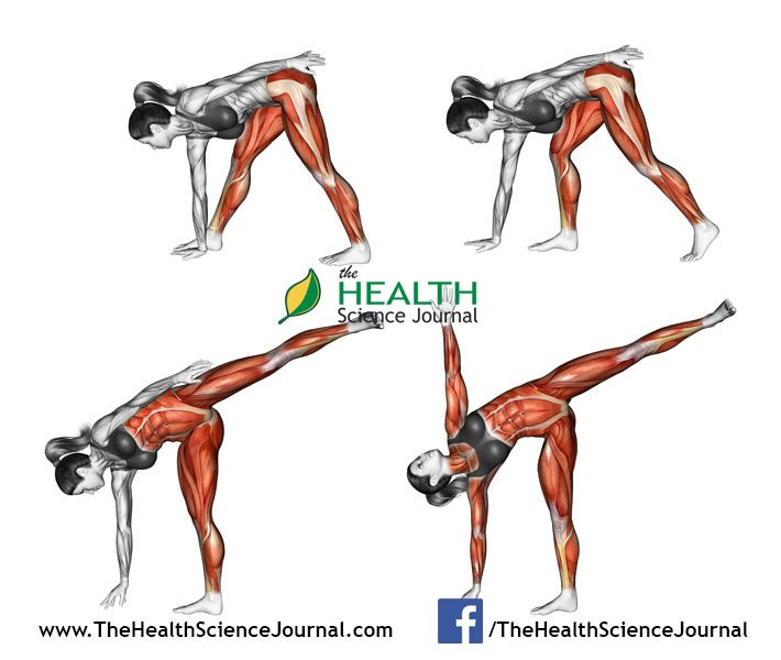 © Sasham | Dreamstime.com - Yoga exercise. Half Moon Pose. Ardha Chandrasana. Female
