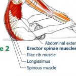 Controlled Balance – Back and Spine Exercises, Part 7