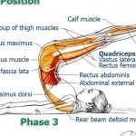 Exercises to Improve Flexibility and Movement Precision of Your Back & Spine, Part 5