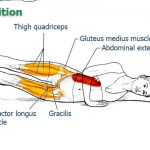 This Exercise Will Improve Your Spinal Health & Posture (Essential for Chronic Sitters)