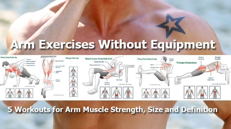 Arm Exercises Without Equipment 5 Workouts For Muscle Strength Size And Definition The Health Science Journal