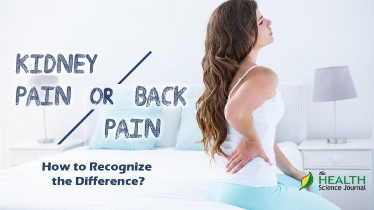 Back Pain Or Kidney Pain How To Recognize The Difference The Health Science Journal