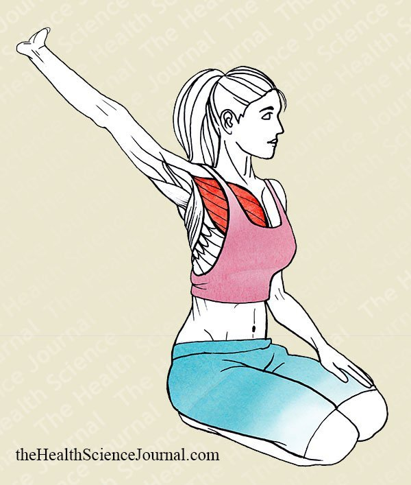 Arm Extension With Assistance - Stretching