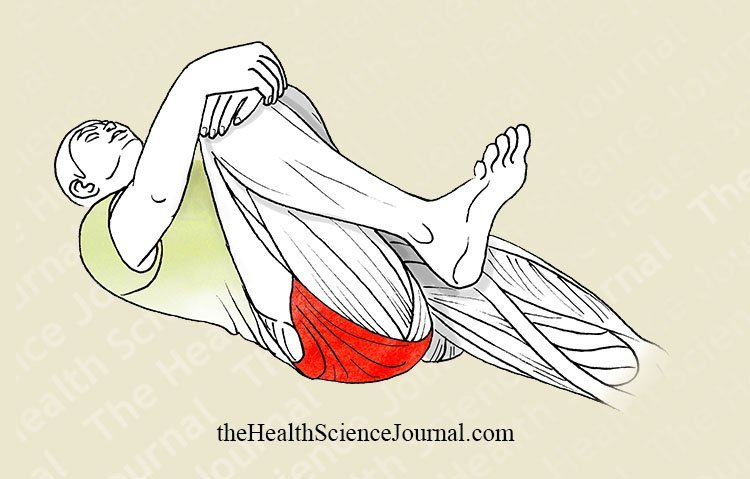 Hip Flexion Lying Down