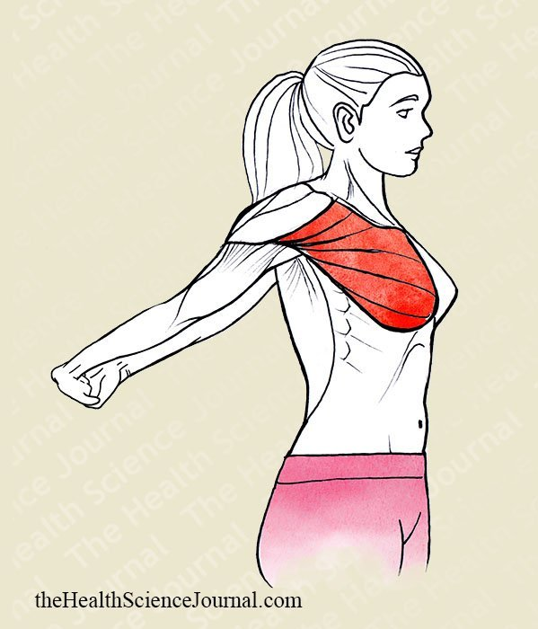 Hyperextension of Shoulders - Stretching