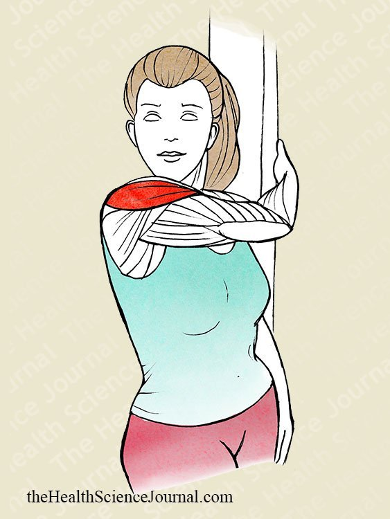 Upright Torso Rotation Shoulder Stretch