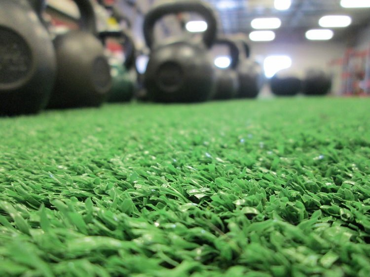gym-grass-weights