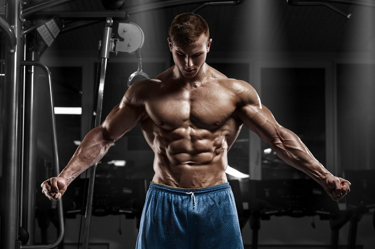 Workout Supplements fitness